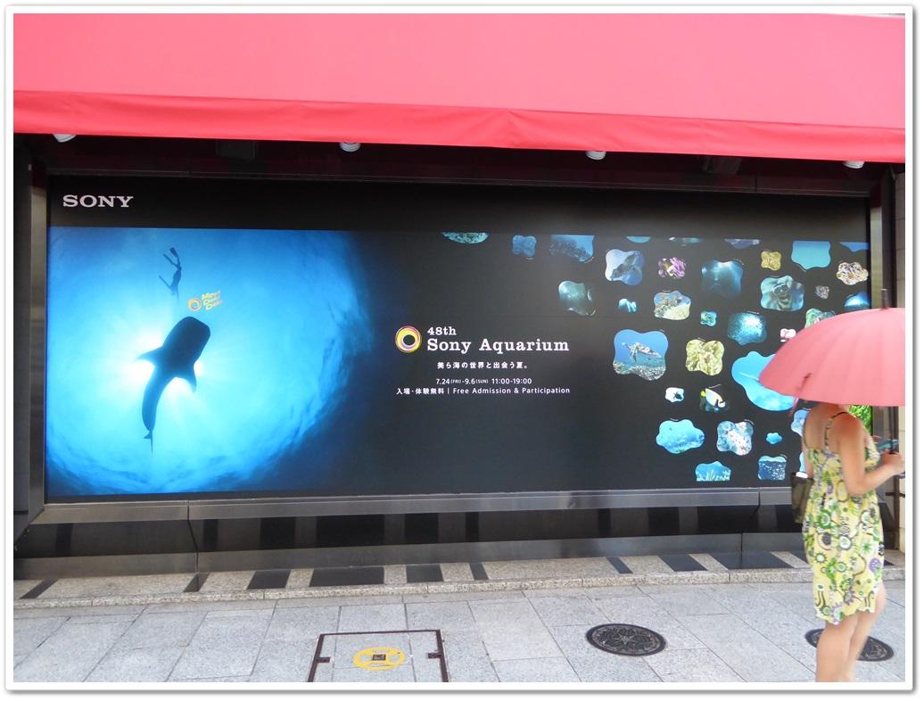 Sony_aquarium