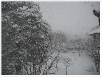 Snow_in_2014